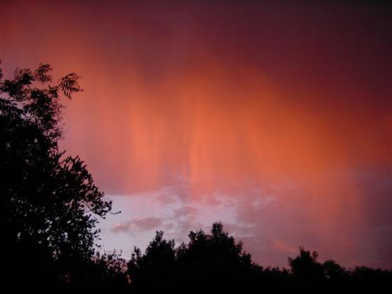 снимка на червените дъждове