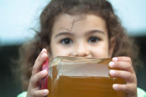 Полезните свойства на пчелния мед