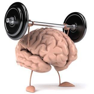 как да подхранваме нашия мозък