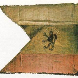 браилското знаме